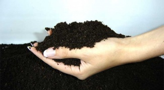 How to determine soil type