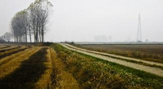 Как оформить землю без межевания