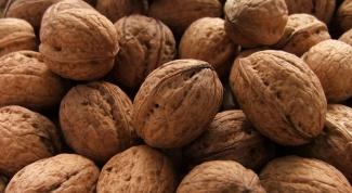 Как пить настойку из перегородок грецких орехов