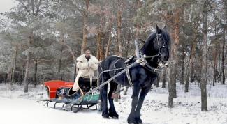 Как изготовить сани для лошади