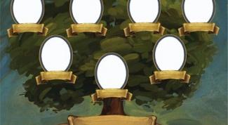 Как создать генеалогическое древо