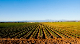 How to start a business in agriculture