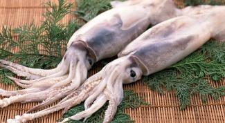 Как фаршировать кальмары