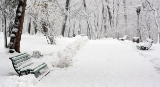 Какие бывают зимние забавы