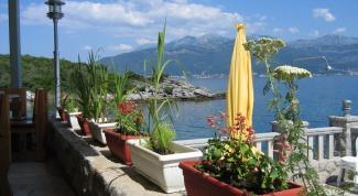 Как снять виллу в Черногории