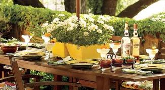 Чем заняться на майские праздники на даче с друзьями