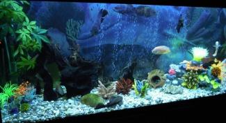 Как наклеить на аквариум пленку