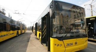 Как вести себя в общественном транспорте