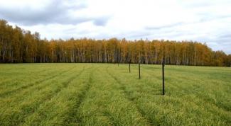 Как выделить земельный участок в счет земельной доли