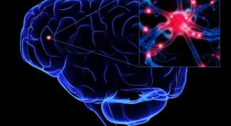 Как увеличить свои умственные способности