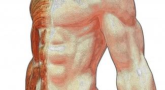 Как быстро увеличить мышечную массу