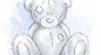 Как нарисовать Тедди карандашом