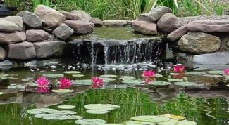 How to make a pond