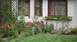 Как обустроить дворик