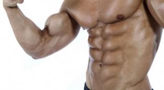 Как определить мышечную массу
