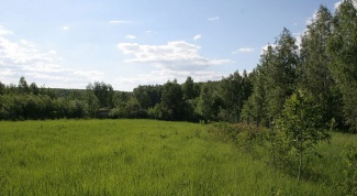Как оформить землю в деревне в 2019 году