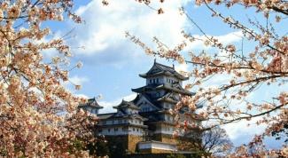 Как оформить визу в Японию в 2017 году