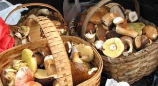 Как вкусно мариновать грибы в 2018 году