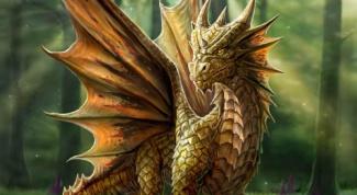Как нарисовать драконов
