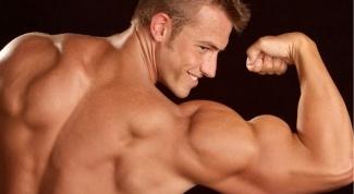 Как питаться, чтобы нарастить мышечную массу