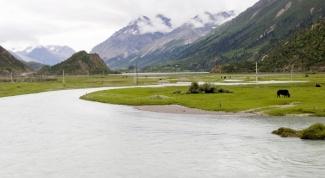 Какая река самая длинная