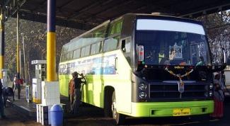 Как выбрать автобусные туры к морю