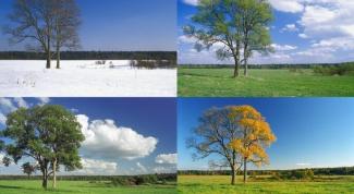 Как нарисовать времена года