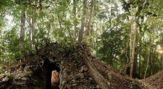 Где нашли новый календарь майя