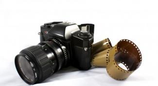 Как научиться профессионально фотографировать