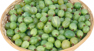 How to make an easy pie from gooseberry