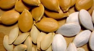Какие семена выбрать для посадки