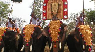 Как проводится Фестиваль Священного Зуба на Шри-Ланке