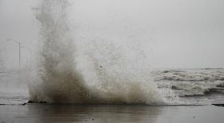 Какой вред нанес тайфун