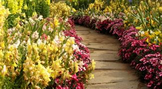 Как правильно сделать дорожки в саду