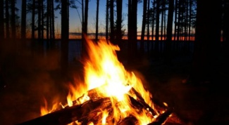 How to kindle a fire in the forest