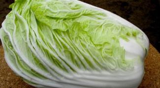 Как вырастить пекинскую капусту