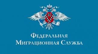 Как изменится миграционная политика России