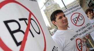 Почему к вступлению ВТО относятся негативно