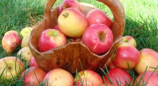 Как отобрать яблоки на хранение