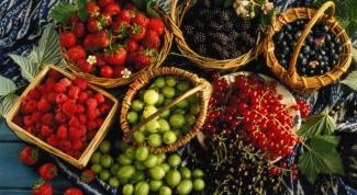 Как приготовить сладкий салат с ягодами
