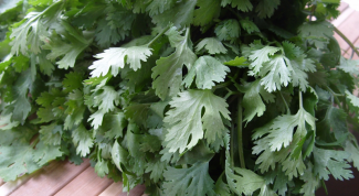 Recipes with cilantro