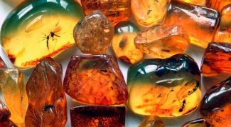 Инструкция по применению янтарной и лимонной кислоты