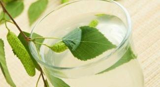 Рецепты хранения березового сока