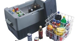 How to choose a car refrigerator