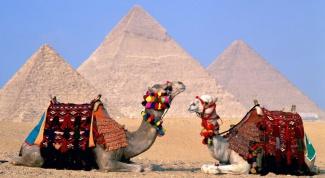 Как в Египте в январе