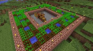 Как вырастить пшеницу в Minecraft
