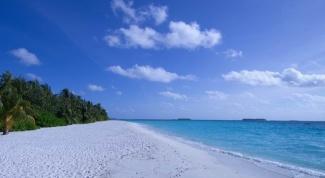 Как выжить на необитаемом острове