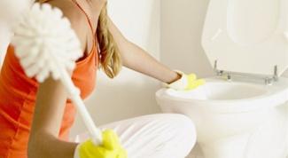 Как правильно чистить унитаз: инструкция