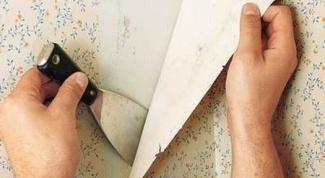 Уроки ремонта: как устранить дефекты при поклейке обоев