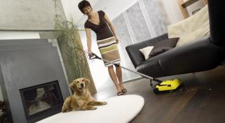 Электровеник: игрушка или домашний помощник?